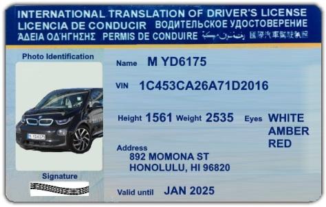 driverless-license