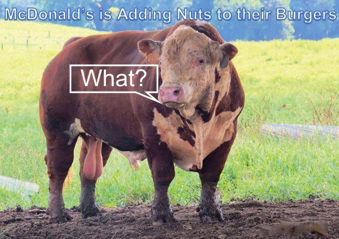 mcdonalds-nut free