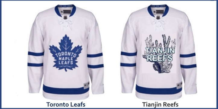 China Hockey Toronto Maple Leafs Jersey